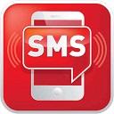 Голосование с использованием номера телефона и смс